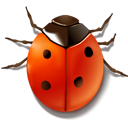 animal bug insect ladybird icon