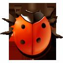 animal bug insect ladybird icon