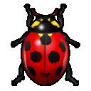bug insect ladybird animal bug insect ladybird icon