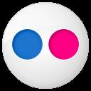 social flickr button
